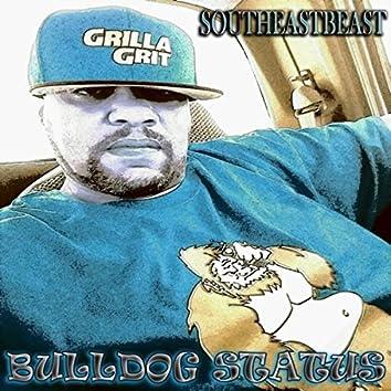 Bulldog Status