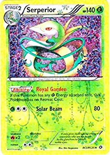 Best sparkly pokemon cards Reviews