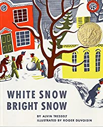 White Snow Bright Snow book