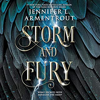 Storm and Fury cover art