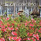 South Carolina Wild & Scenic 2022 12 x 12 Inch Monthly Square Wall Calendar, USA United States of America Southeast State Nature