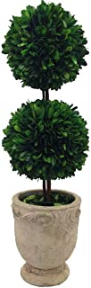 Best large preserved boxwood topiary Reviews