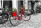Puzzles De Madera Puzzles 3D Regalo De Vacaciones Puzzle 1000 Piezas Bicicleta Roja Adulto Puzzle-Bicicleta Roja Puzzle Con Flores En La Calle En Blanco Y Negro-Turquía-Turquía