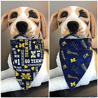 College Reversible Slide On Pet Bandana Glitter University Michigan U of M Maize Blue Over the Collar Cat Dog