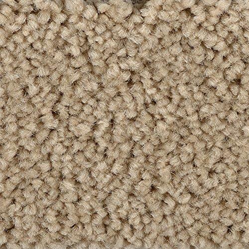 BODENMEISTER BM72182 Teppichboden Auslegware Meterware Hochflor Shaggy Langflor Velour beige 400 cm und 500 cm breit, verschiedene Längen, Variante: 8,5 x 5 m