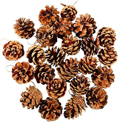 Keriber 24 pezzi 3,5-6cm Pigne di Natale con catena Pigne naturali ciondolo artigianale ornamento per l'etichetta regalo albero di Natale abete decorazione