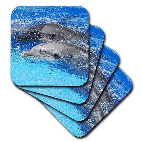 3dRose CST_37746_2 Zwei Delfine, die zusammen am Ozeanographic Aquarium N Valencia, Spanien, weiche Untersetzer, 8 Stück