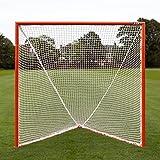 Net World Sports Professional Lacrosse Goal – 6ft x 6ft Competition Match Spec (Single Goal)