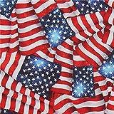 Vereinigte Staaten von Amerika Stars and Stripes Flagge