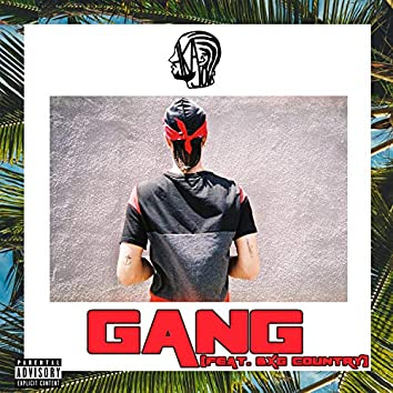 Gang (feat. BXG Country)
