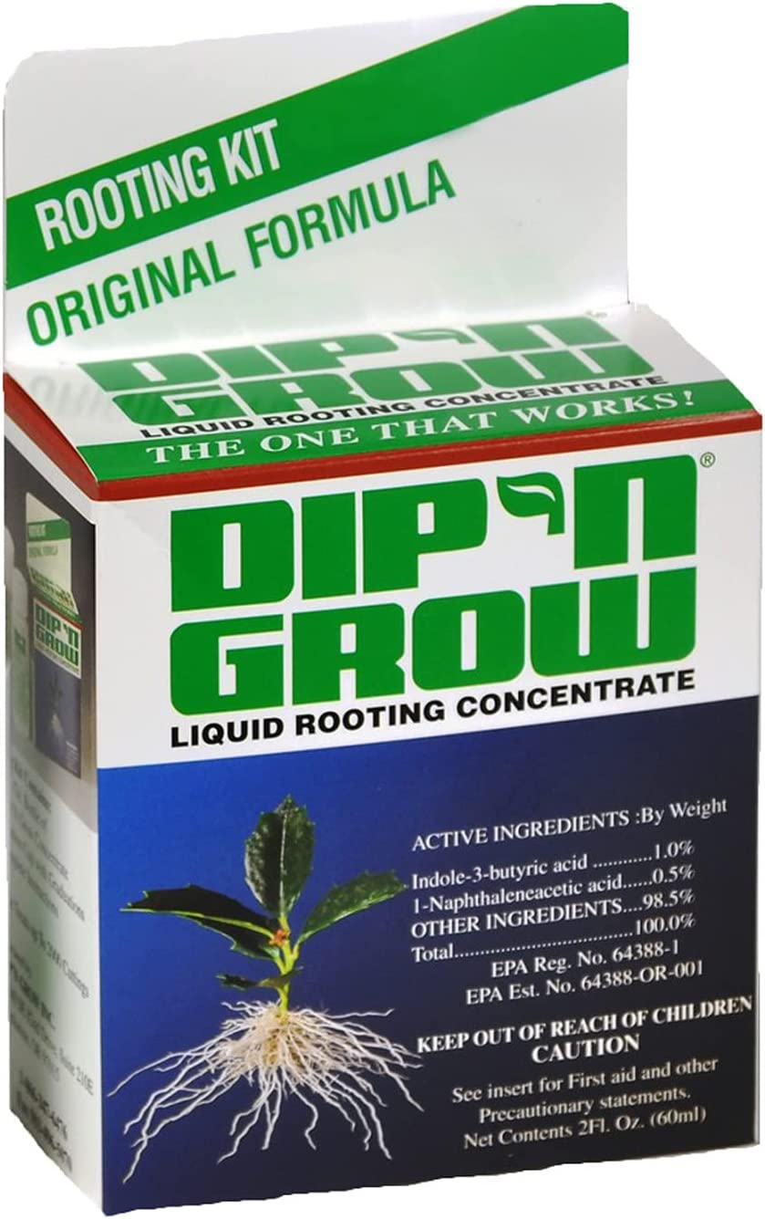 Dip'N Grow Rooting Miami Mall Solution 12 Elegant Cs 2 oz