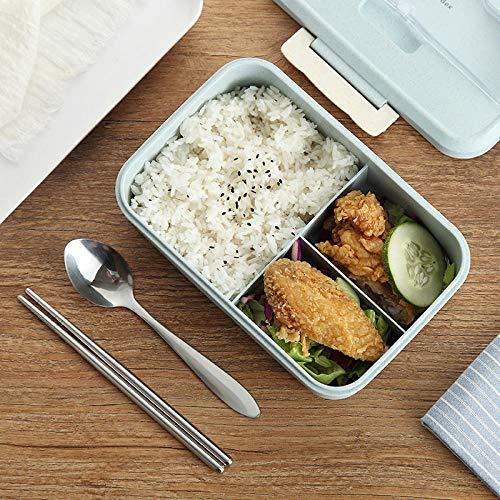 RMLITE Lunchbox 1000 ml, Bento Box met 3 vakken, BPA-vrij, geschikt voor magnetron en vaatwasser, CE-gecertificeerd, FDA, RoHS, met tas en beker