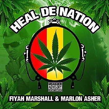 Heal De Nation