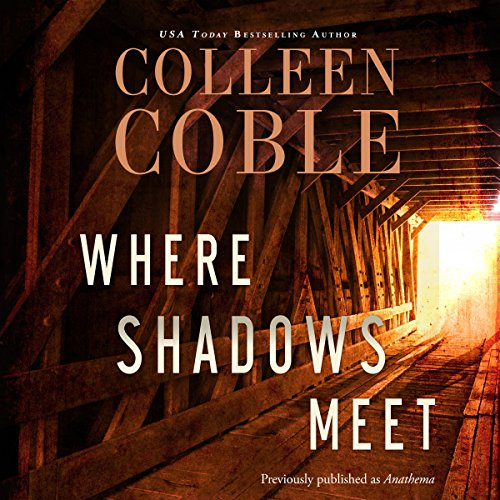 Where Shadows Meet audiobook cover art