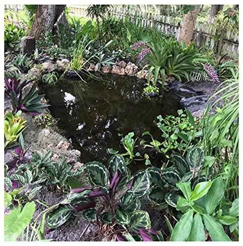 Vijver Liner Opvouwbare Duurzame Tuin Waterval Huid Membraan PVC 4M Brede Vijver Liner 0.2mm Kwaliteit Tuin Vis Vijver Liner Koi Vijvers, Water Tuinen en Fonteinen Landsca (Grootte: 4 × 4.5 m (40 × 50 ft), Kleur: 20S)