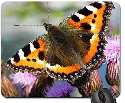 Mouse Pads,Small Tortoiseshell Mouse Pad, Mousepad (Butterflies Mouse Pad)