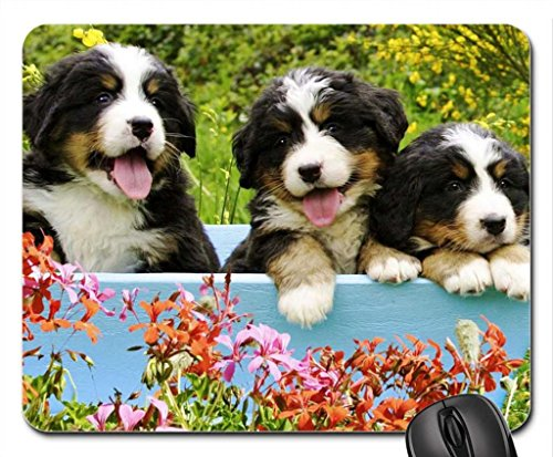 Pretty Pups Mouse Pad, souris (Dogs Mouse Pad)