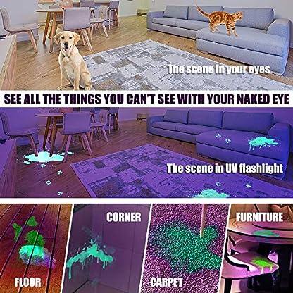 Anipaw Black Light UV Flashlight, Portable 100 LED UV Light Blacklight Detector for Pet (Dog/Cat) Urine Detection, Pet Stains, Bed Bug, Matching with Pet Odor Eliminator 6