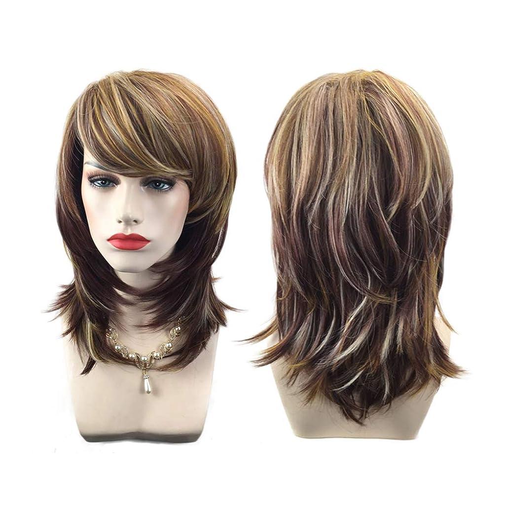 嫌がらせ地味なオーロック女性の巻き毛のファッション毛髪のかつら自然に見える絶妙な弾性ネットウィッグカバー(66273)