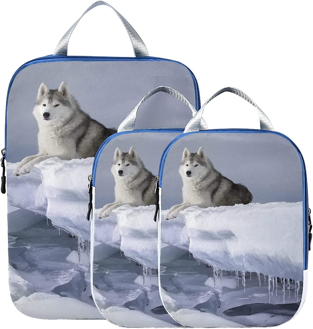 Packing Organizer wholesale Charlotte Mall Dog Breed Siberian F Snow Bags Husky