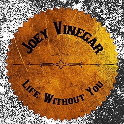 Joey Vinegar