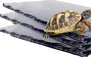 Reptile Basking Platform Tortoise Rock Plate Turtle Bathing Dish Feeding Food Dish
