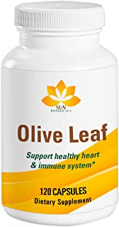 Olive Leaf Extract Vegetarian Capsules 120 Count