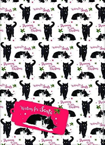 Geschenkpapier Weihnachten - Cute Christmas Kittens