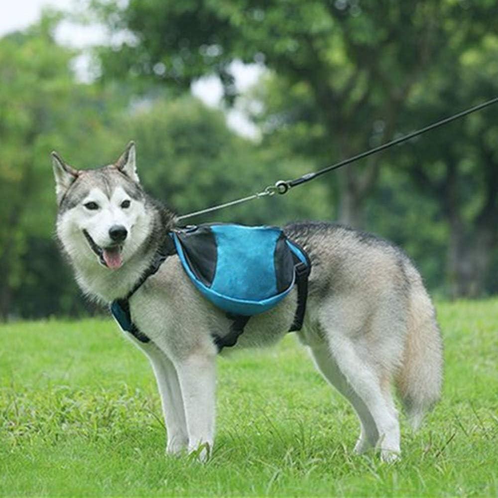 Color : Blue, Size : S SongMyao Hundesatteltasche wasserdichte Satteltasche Verstellbares Hundegeschirr Rucksack Kampierenden Das Hundetraining Liefert Fu/ß