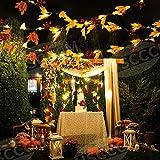 MUSCCCM Herbstgirlande,2m Ahornblatt Lichterketten mit 20 LED 26 Blätter 7 Blumen 6 Fruchtbüschel Herbst Dekoration für Fallen Weihnachten und Außen Zuhause Herbstparty Batterie Girlande - 5