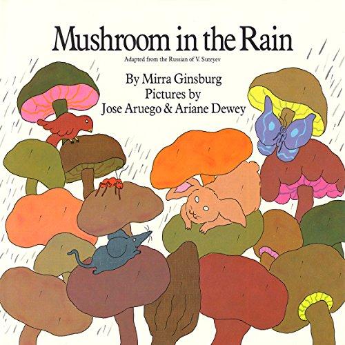 Mushroom in the Rain audiobook cover art