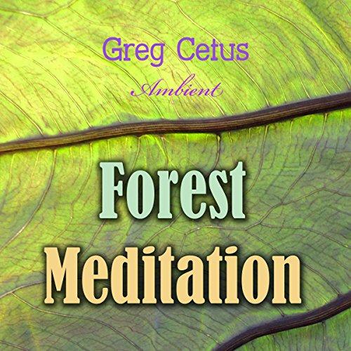 Forest Meditation audiobook cover art