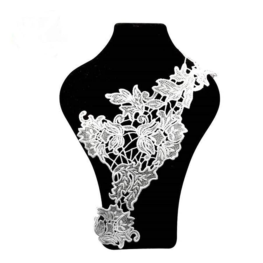 Fashion White Embroidery Round Neckline Lace Fabrics Collar for Embroidered Sewing Supplies DIY Crafts Sew-on Clothes (Style 8)