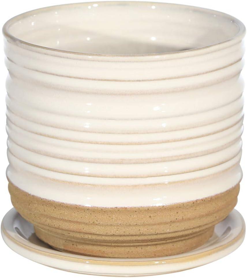 Sagebrook Home 14773-01 Ceramic 5.5