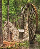 Springbok Puzzles - Water Wheel - 1000 Piece Jigsaw Puzzle - Large 30 Inches by 24 Inches Puzzle - Made in USA - Unique Cut Interlocking Pieces
