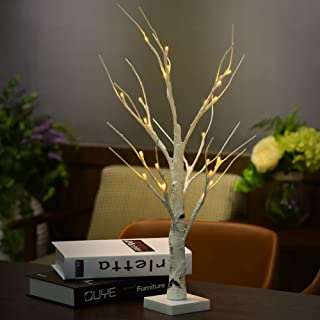 GOTDCO. Creative Romantic Valentines Day Tree Light,0.6M 24 LED Silver Birch Twig Tree,Warm White Light White Branches Home Bedroom Decoration Table Lamp Perfect Gift for Christmas Party (Yellow)
