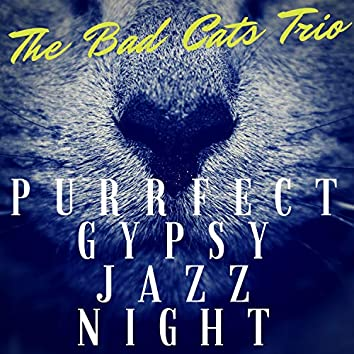Purrfect Gypsy Jazz Night