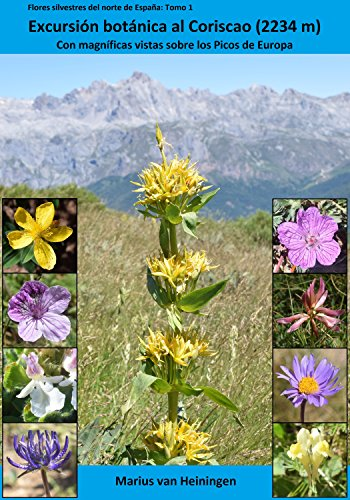 Excursión botánica al Coriscao (2234m): Con magníficos panoramas sobre los Picos de Europa y la Cordillera Cantábrica (Flores silvestres del norte de España nº 1) eBook: van Heiningen, Marius: Amazon.es: Tienda Kindle