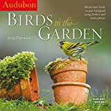 Audubon Birds in the Garden 2019 Calendar