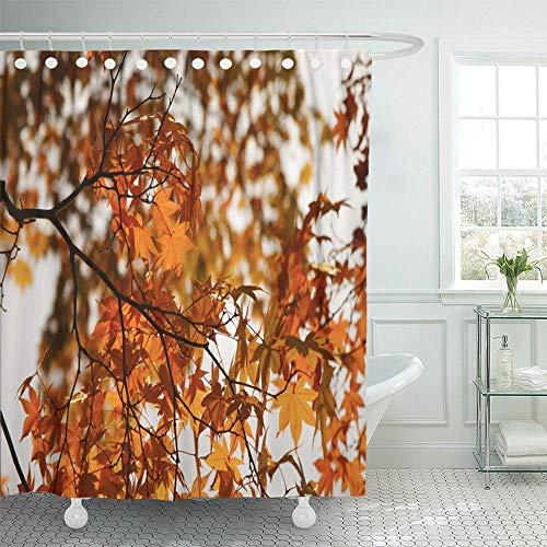 N\A Duschvorhang wasserdicht verstellbar Polyester Stoff Nahaufnahme von rot-orange Blättern auf dem Herbstwald im öffentlichen Park Gezeigt als mit Haken für Badezimmer gesetzt