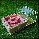 ZHIYAN Hormiga Hormiga Hormiga Tipo Magnético Bionic Plano Yeso Hormiga Nido, Castillo de Hormiga Pet, Materia Hormiga Supervivencia Casa (Color : B, Size : 150X95X60mm)