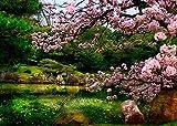Japón, Jardín 1000 Piezas De Rompecabezas para Adultos Juego Educativo De Ocio para Niños