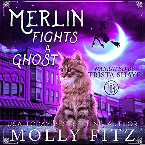 Merlin Fights a Ghost cover art