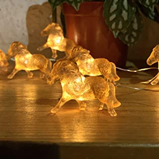Horse String Lights, Equestrian Themed Night Light Copper Wire 10 Feet 24 LEDs USB Battery Operated with Remote Control fo...