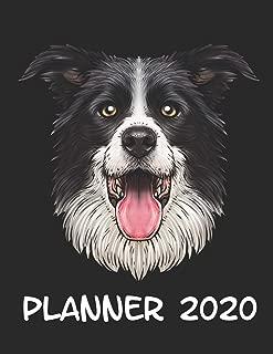 Mejor Dog Yoga Meme de 2020 - Mejor valorados y revisados