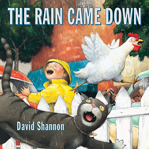 The Rain Came Down audiobook cover art