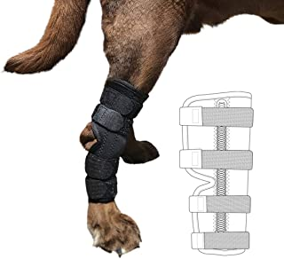 Labra Metal Spring Super Supportive Dog Rear Leg Hock Joint Wrap Brace Protects Canine Wounds as They Heal Compression Brace Heals and Prevents Injuries and Sprains Helps Arthritis
