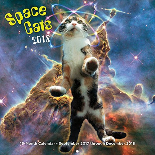 Space Cats 2018: 16 Month Calendar Includes September 2017 Through December 2018