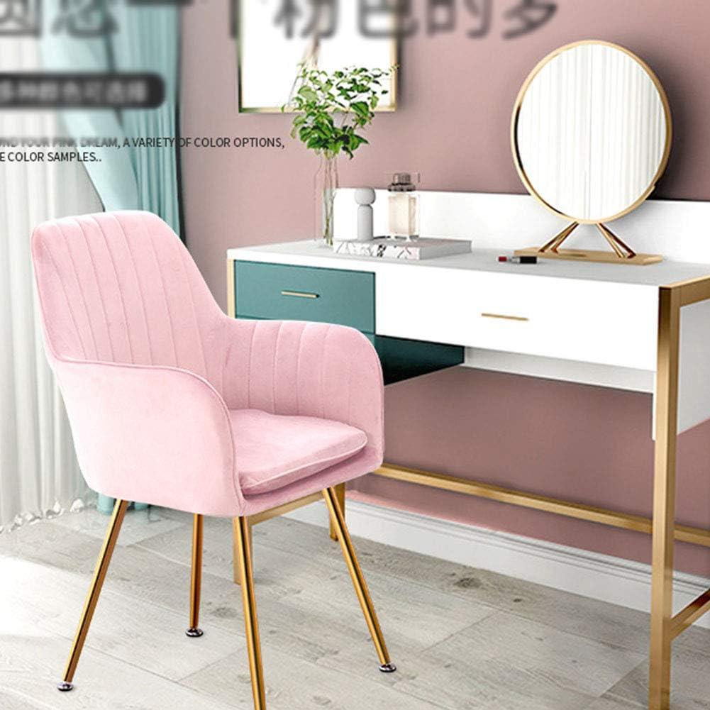NoBrand Chaise de Table latérale pour Salle à Manger – Manucure Maquillage – Chaise de Restaurant – Chaise de Bureau – Siège de Salon de beauté avec Coussin de siège Rose