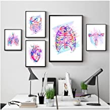 5 pieces Anatomy Print Organs Poster Brain Heart Lungs Liver Pelvis Rib Cage Human Painting Clinic Wall Art Decor -40x60x2 40x80x2 40x100cm (no frame)